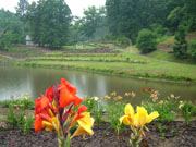 Daylilies and gardens tour picture